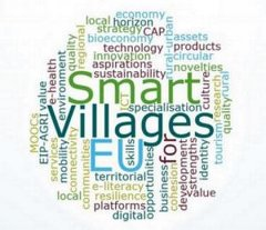 https://ec.europa.eu/agriculture/sites/agriculture/files/rural-development-2014-2020/looking-ahead/rur-dev-small-villages_en.pdf