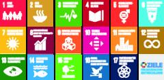 SDG Icons, UNIS Wien