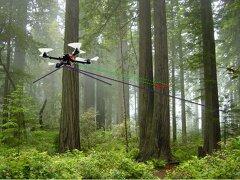 Projekt Forest-IMATE (FFG)/ Stephan Weiss