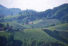 Naturpark-Südsteiermark