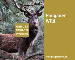 Genussregion Pongauer Wild